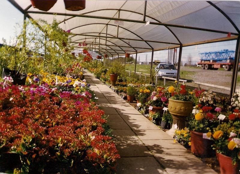 Viveros eden for Viveros y jardines